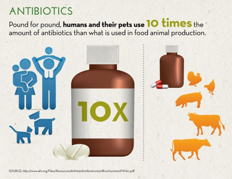 Six Common Misconceptions About Antibiotics and Meat